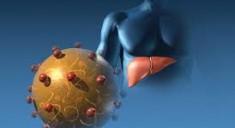 Классификация инфекционного гепатита